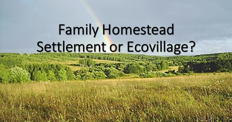 What is Created - Family Homestead Settlement or Ecovillage?
